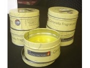 The Candle Factory Citronella Fragranced Candles