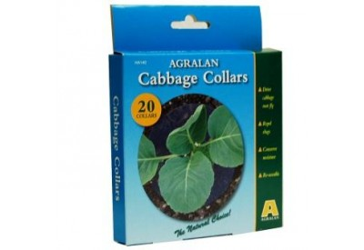 Agralan Cabbage Collars (x 20)
